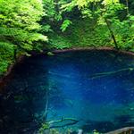 【世界遺産と名湯】 『白神山地:十二湖 青池』と不老ふ死温泉 1泊2日の旅