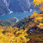【絶景】 紅葉のベストシーズン~立山黒部アルペンルート・上高地散策 1泊2日の旅