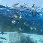 【エンタメ】上野動物園とサンシャイン水族館!かわいい動物に癒される旅