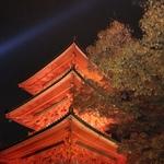 紅葉の京都、奈良を行く