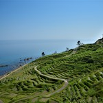【秋の特選旅行 1泊2日】奥能登、自然と伝統と文化の旅