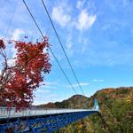 【秋の特選 日帰り】花貫渓谷・竜神大吊り橋と袋田の滝