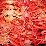 寺泊鮮魚ショッピングとお刺身定食