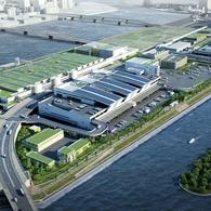 豊洲市場自由見学と東京スカイツリー